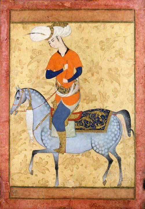miniatura-di-cavallo-persiano-appaloosa.jpg (501×720)