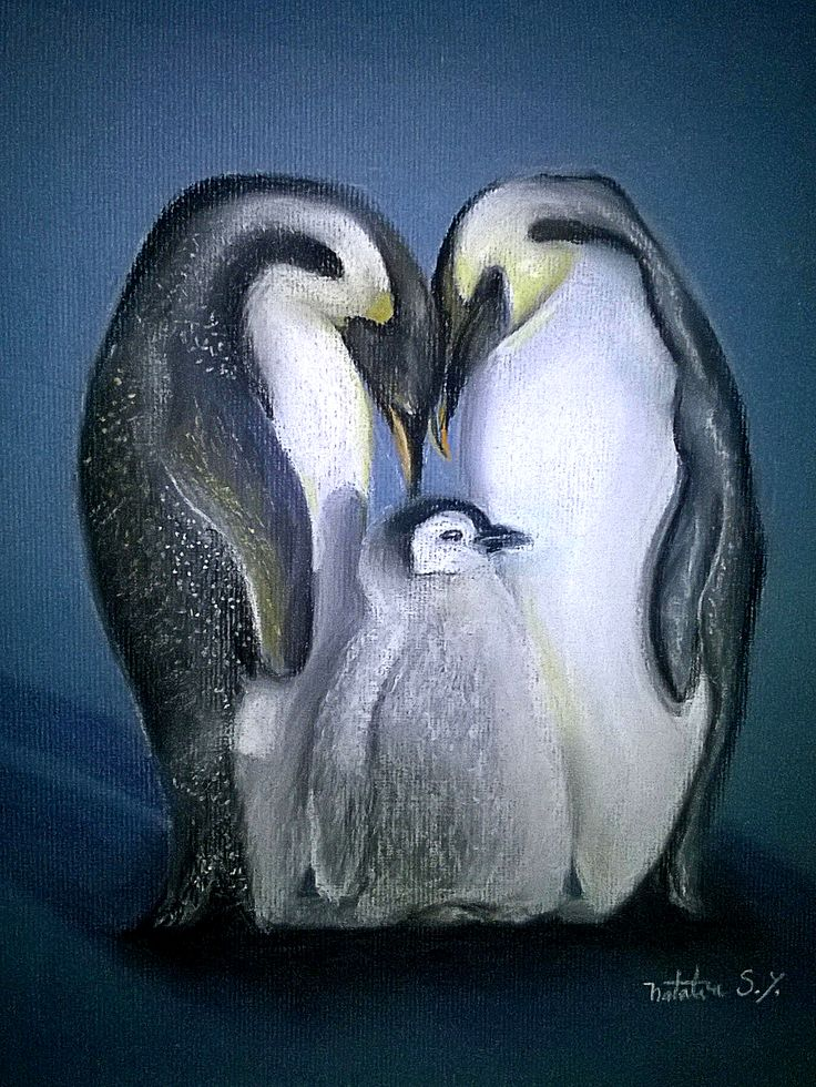 Pingüinos al pastel #sketch #pastels #pencils #nature #penguin #drawing #art #pastelpencils
