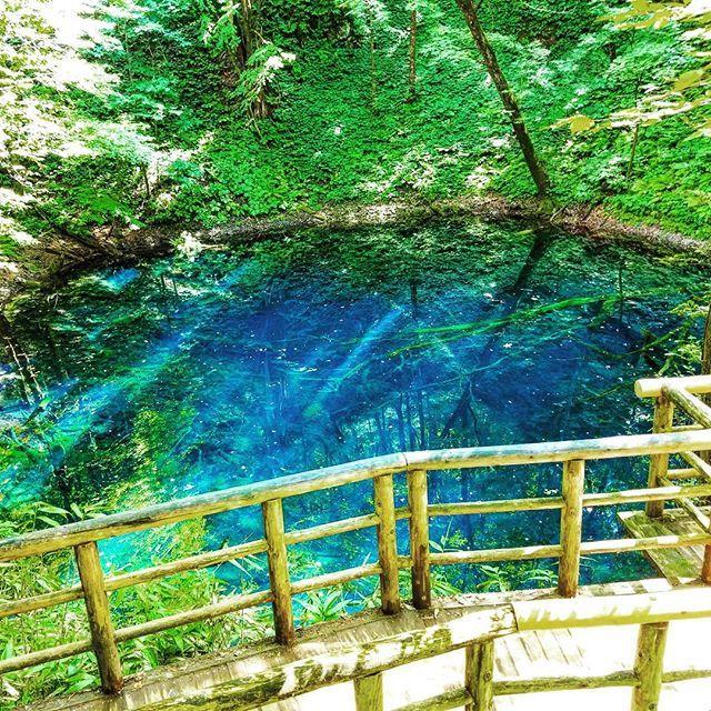 #青森#十二湖#青池#神秘的#青#なんでこんなに青いのかはまだ解明されてないんだって!#自然#清涼感