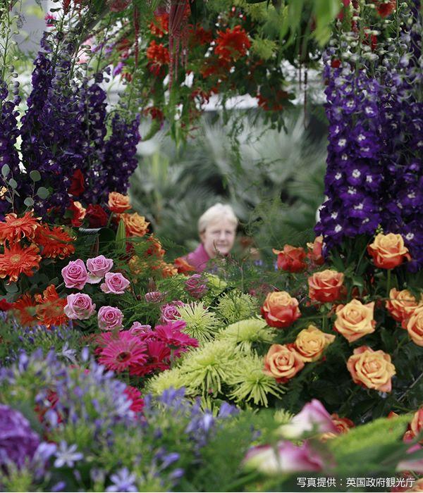 ロンドン チェルシーフラワーショー(Chelsea Flower Show in London)