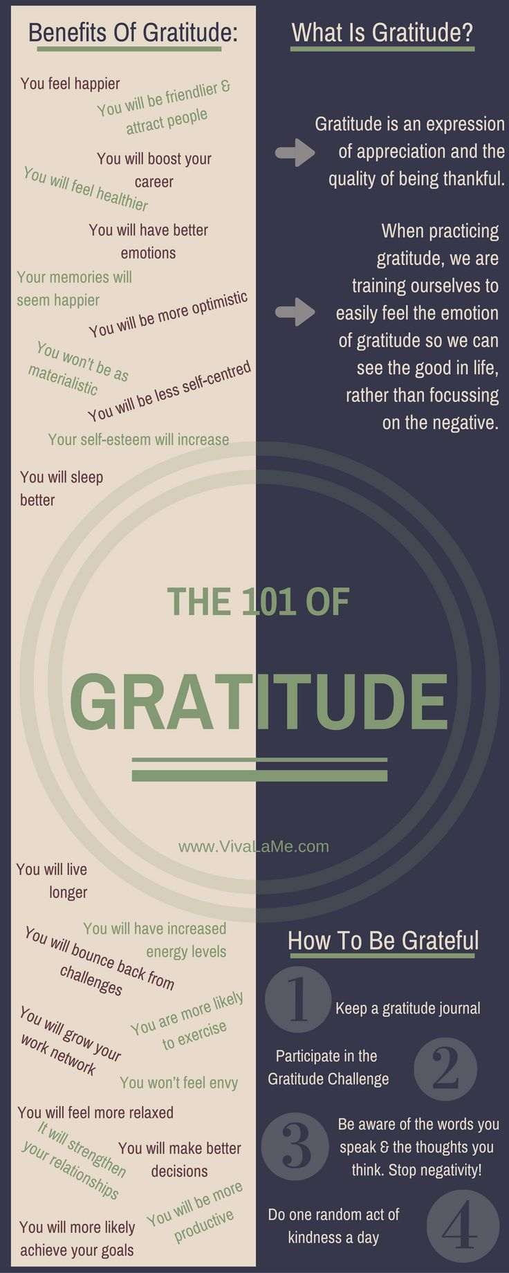 Practicing Gratitude: The 101 of Gratitude — VivaLaMe