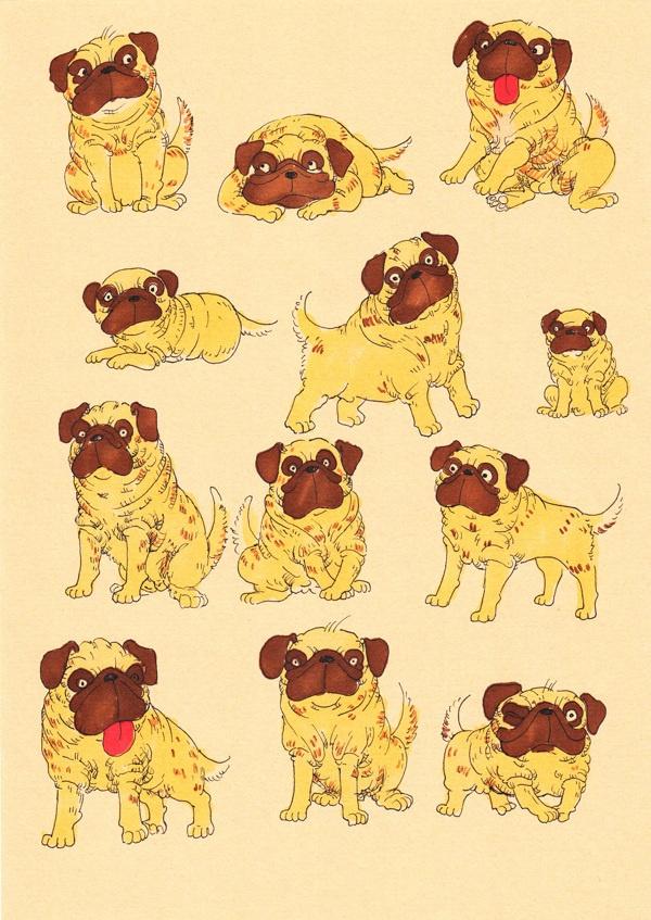 Pug Series by Misha Ahmad, via Behance