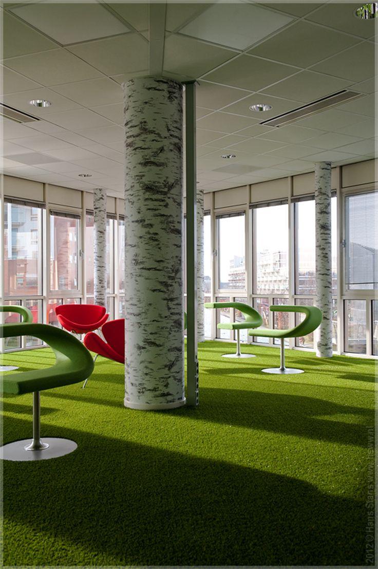 Outdoor Carpet Ideas