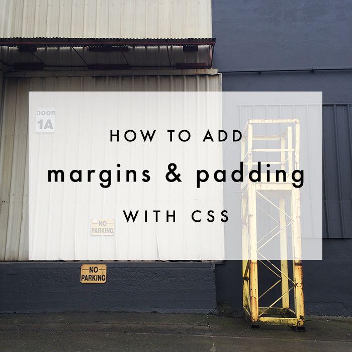CSS Basics: Margin & Padding | The Blog Market