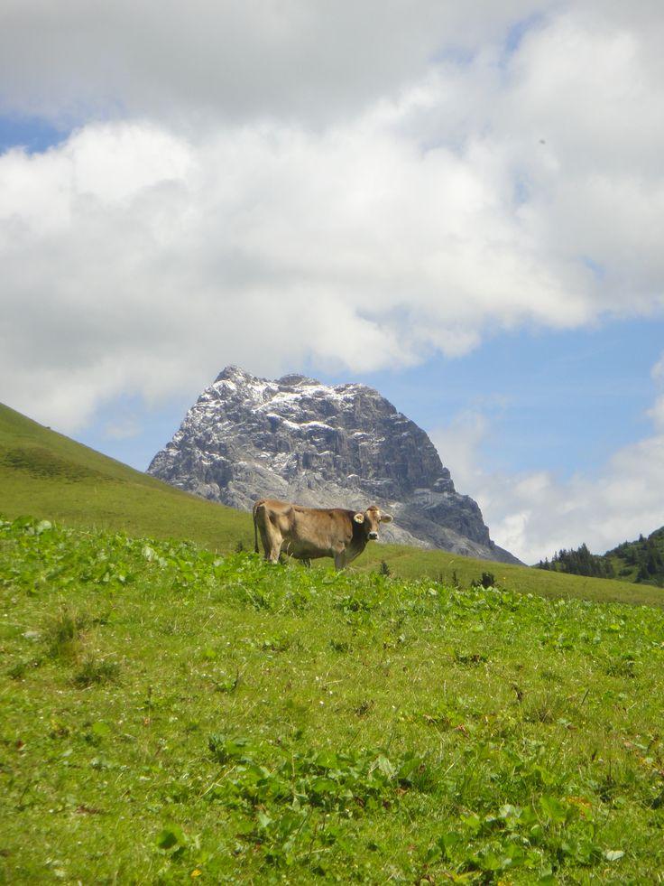 Mount Widderstein - Bregenzerwald