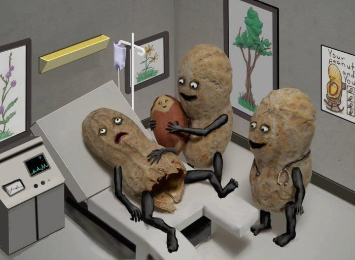 We eten de kinderen van de pinda's