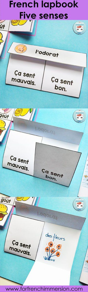 French Matchbox Flaps (sense of smell). Activity included in the French Five Senses Lapbook: a hands-on, interactive activity to recap and consolidate knowledge about the five senses. Les cinq sens.