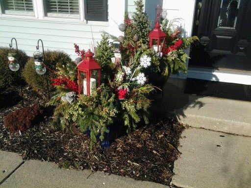 Evergreen outside flower pot