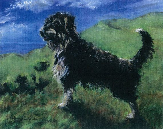 Terrier Oil Print - A4 - Scamp, Terrier Dog, 5% of profits to Cornwall Air Ambulance Trust #dogs #art
