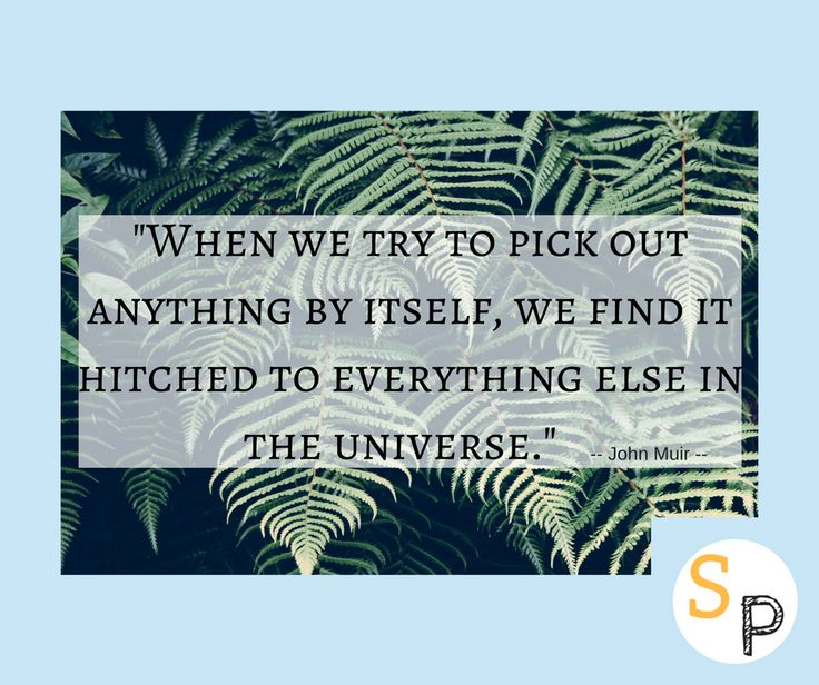 """When we try to pick out anything by itself, we find it hitched to everything else in the universe."" --John Muir  Everything is ""hitched"" to everything else, including us.  What are you connected to?  #sunshineandpowercuts #lifeisbeautiful #enjoyitsbeauty #nature #universe #connectedtonature #connection #offgrid #offthegrid #offgridlife #offgridliving #inspire #inspireothers #inspirationalquotes #inspireotherswithnature"