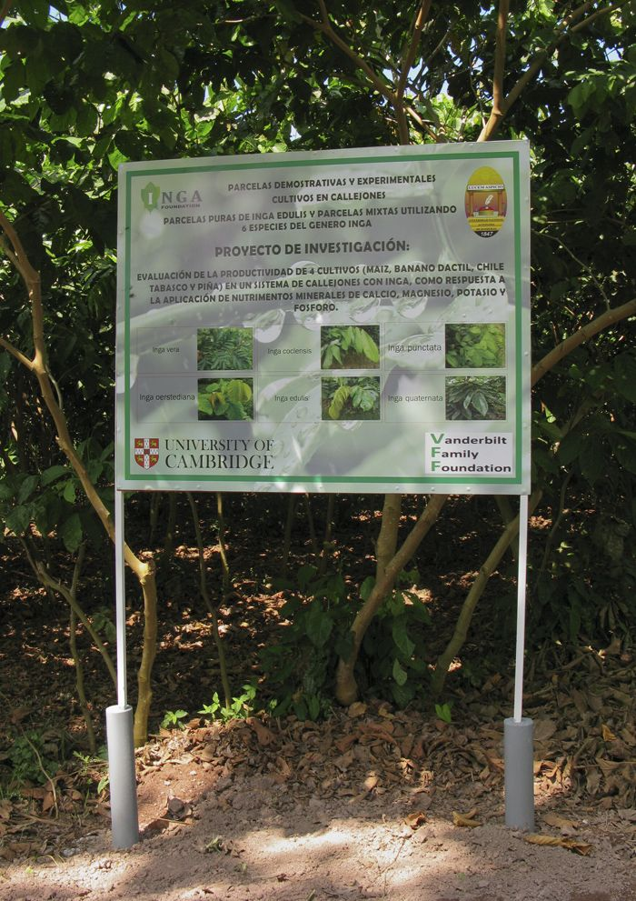 This new info board at the demo site describes the experiment we will be carrying out with CURLA University over the next few years, involving 4 different types of crop and 4 different soil nutrients.