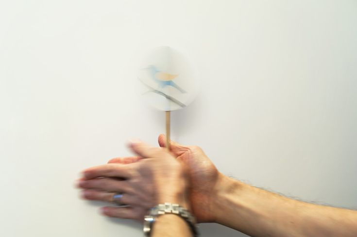 Make a bird thaumatrope (spinner) with printable.