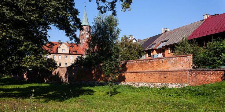 Mury miejskie w Ścinawie