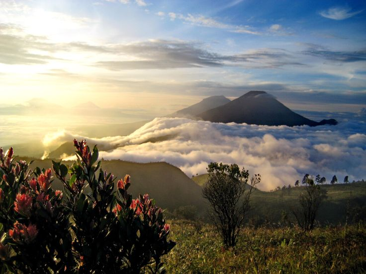 Sumbing Sindoro ,Prau Mt 2340mtrs