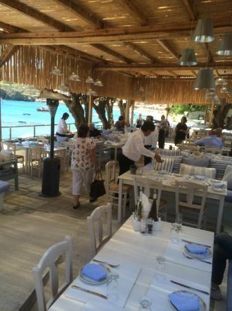 Out of the Blue Capsis Elite Resort (Crete/Agia Pelagia) - Hotel Reviews - TripAdvisor