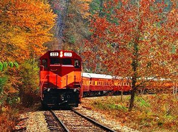Fall Foliage Trains USA and Canada   Scenic train rides track fall colors in North America