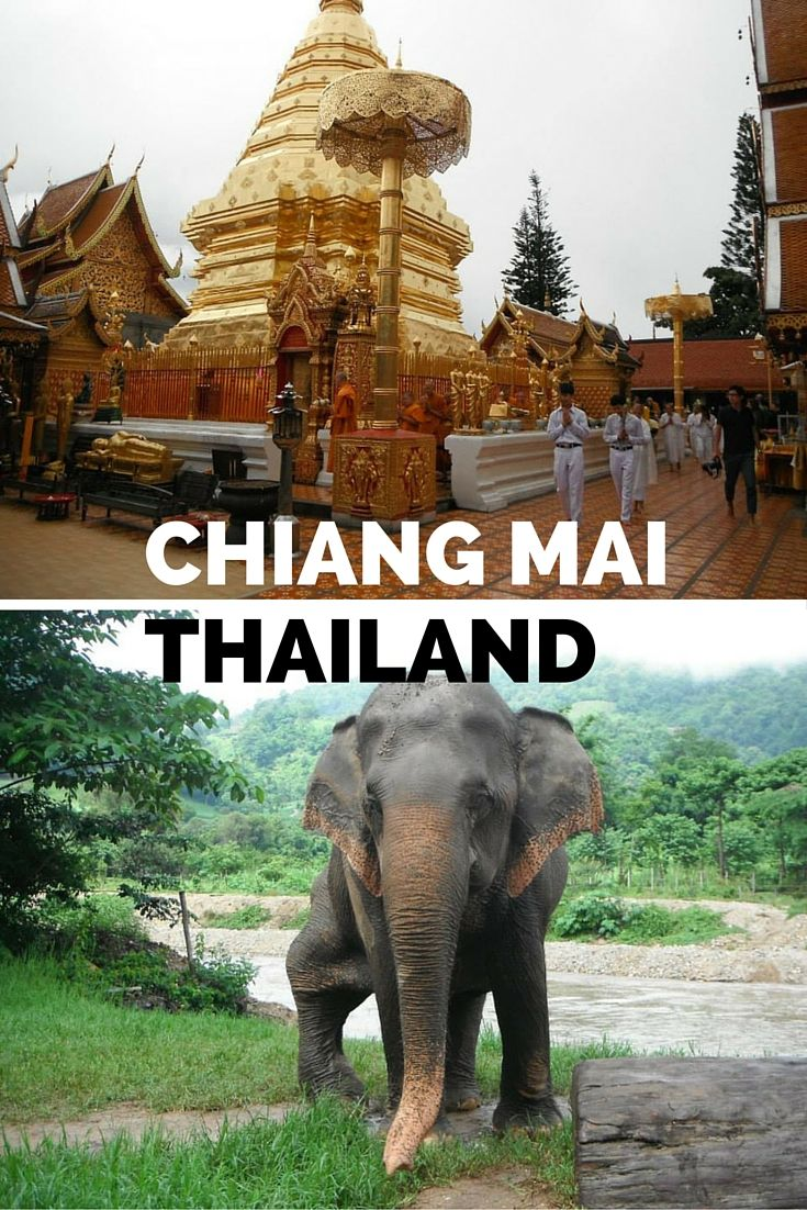 Stunning Chiang Mai in the north of Thailand offers a wealth of things to do and see. You can learn about Buddhist culture at a temple, bathe rescued elephants at a special sanctuary and even learn to cook real Thai cuisine. It's no wonder Chiang Mai is a favourite among travel bloggers, digital nomads and wandering backpackers. Find out what you should do there on While I'm Young.