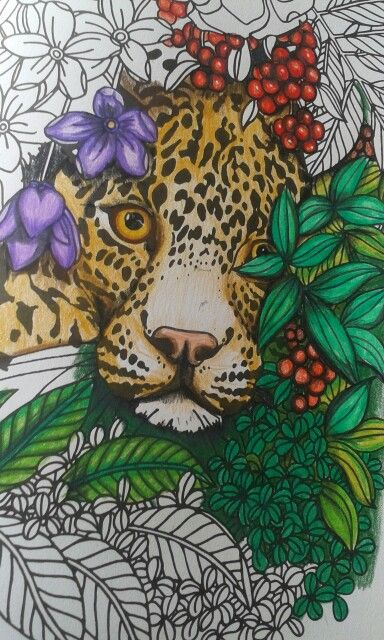 From can't sleep colouring book