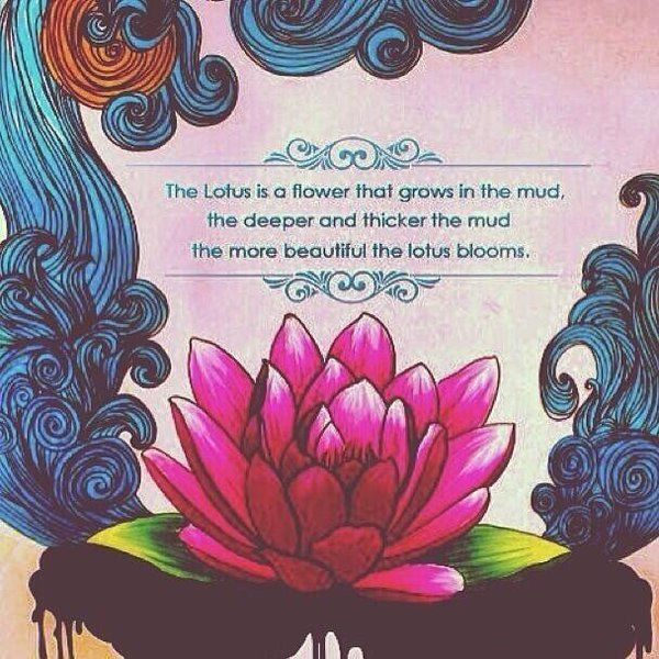 """The lotus flower grows in the mud, the deeper the mud the more beautiful the lotus blooms."""