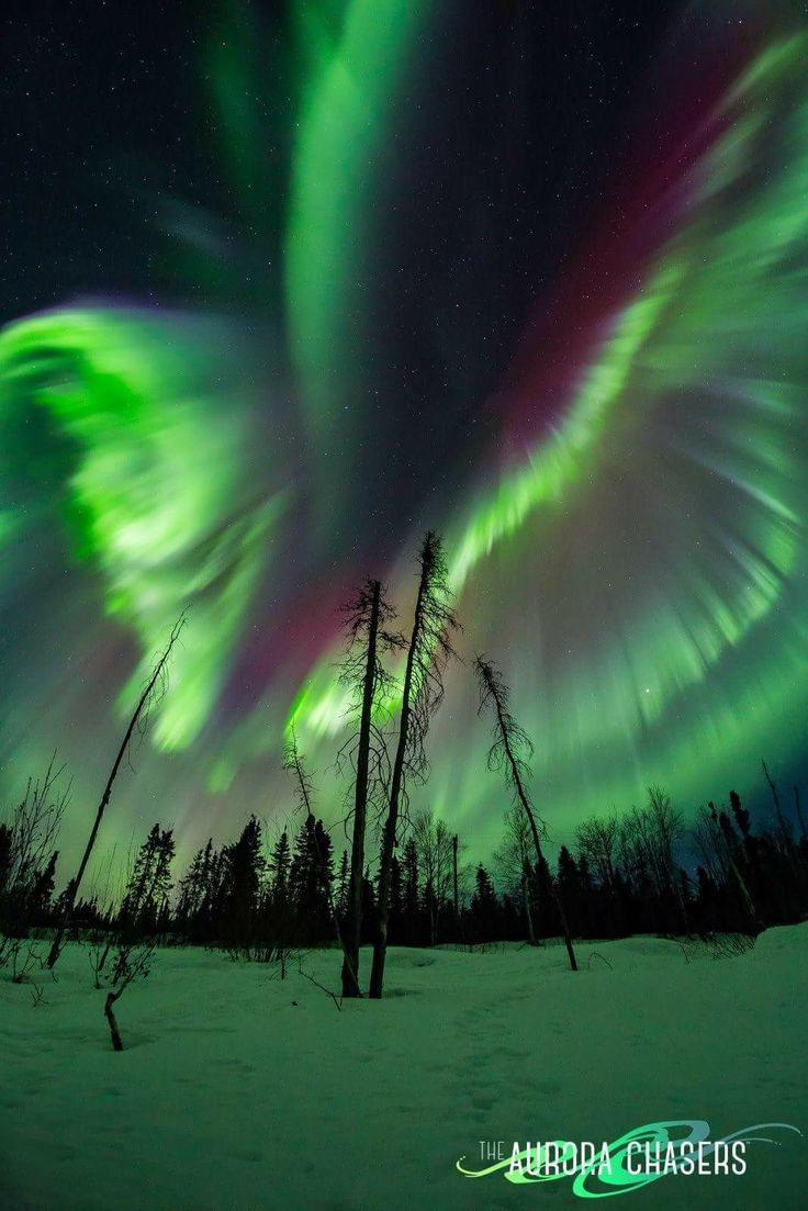 Best 25 Northern Lights Wallpaper Ideas On Pinterest