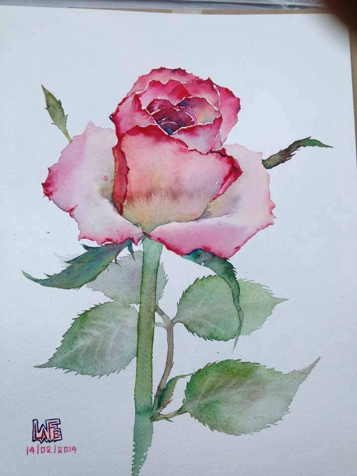 Watercolor by lafe paintings pinterest best for Watercolor painting flowers