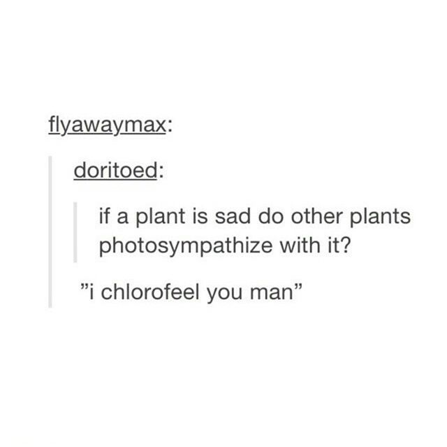 LOL! Science side of tumblr, i guess..... ??