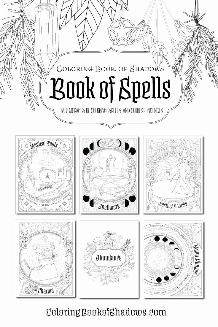Book Of Shadows Coloring Book Beautiful 98 Best Coloring Book Of Shadows Images On Pinterest Book Of Shadows Book Of Shadow Coloring Books