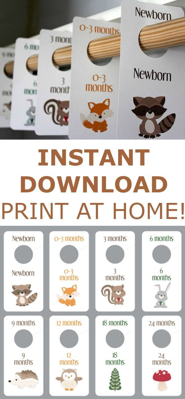 Woodland Creatures - Baby Boy Closet Dividers - Animals - Printable - Baby Room - Nursery Decor - Nursery Organization - Baby Shower Gift #Affiliate