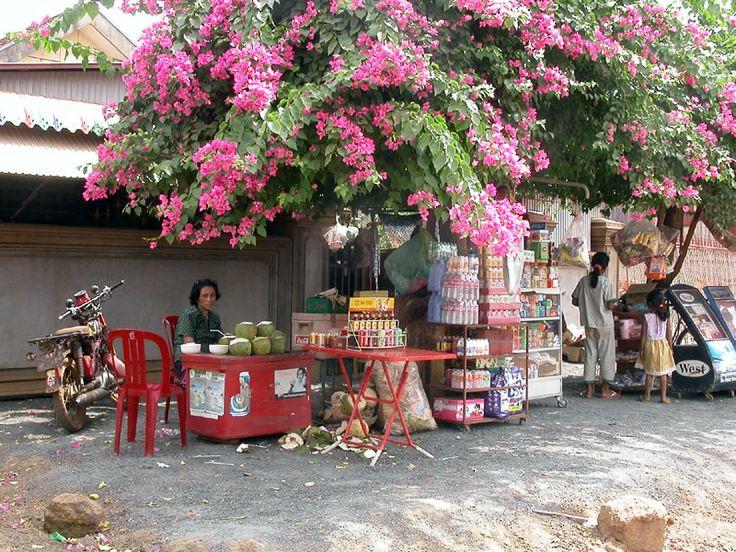 Family business, Kratie, Cambodia