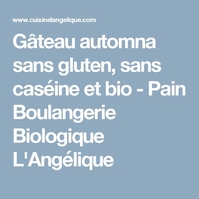 Gâteau automna sans gluten, sans caséine et bio - Pain Boulangerie Biologique L'Angélique
