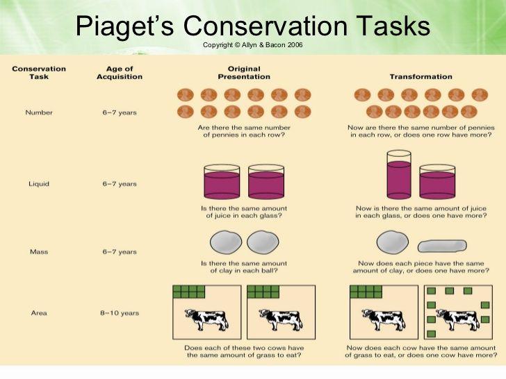 3ed0d721040 Piaget s Conservation Tasks
