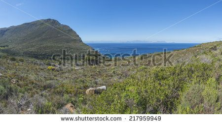 http://www.shutterstock.com/pic-217959949/stock-photo-cape-point-is-located-near-the-city-of-cape-town-south-africa-the-peninsula-has-towering-rock.html?src=pp-same_artist-217959946-1 Cape Point Is Located Near The City Of Cape Town, South Africa. The Peninsula Has Towering Rock Cliffs And Lighthouse That Overlook The Beautiful Ocean View. A Tourism And Travel Hot Spot. Stock Photo 217959949 : Shutterstock