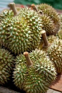 Durian...I'm just not sure how I ever liked this fruit...it used to clear my house out when I ate it...  : /