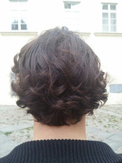 Male curly hair cut, beautiful chestnut brown colouring with defined curls