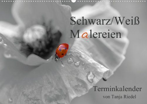 Schwarz-Weiß Malereien Terminkalender von Tanja Riedel für die Schweiz (Wandkalender 2014 DIN A3 quer): Tolle Schwarz-Weiß Fotografien mit einem ... in dem Bild (Monatskalender, 14 Seiten) von Riedel Tanja, http://www.amazon.de/dp/3660095567/ref=cm_sw_r_pi_dp_S6QPsb07F35SC