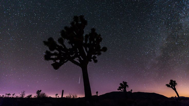 Magical Timelapse of the Perseid Meteor Shower in Joshua Tree Park. (Heden, P 2013)