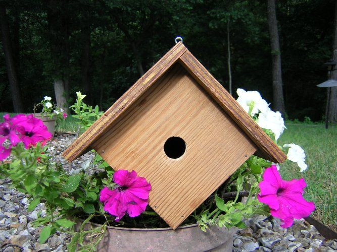 17 best images about birdhouses on pinterest bird houses for Best birdhouse designs