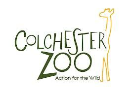 Zoo Jobs: Trainee Elephant Keeper