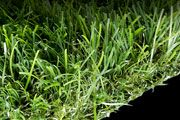 SYNFescue 214 SKU: SF214 | Total Weight: 88 oz. | Warranty: 15 years