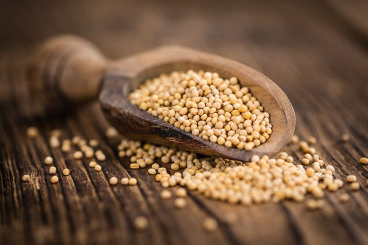 #Mustard_Seeds_Types  These seeds are rich in #energy, #sugars, #dietary #fiber, #fats, #proteins and #minerals. #Mustard_seeds and #mustard_oil is famous all over the world. Indians use the seeds and oil lavishly in their food items regularly. See More @ https://goo.gl/6jmY7h  #veggies #veggiesinfo #healthtips #seeds #diet