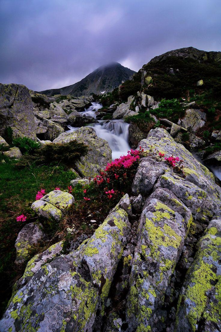 Retezat - Wonderful moment in the high mountains,Bucura lake,Retezat National Park,Carpathians,Transylvania,Romania, Europe