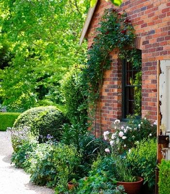 The art of living: artist Michael McWilliams' Tasmanian garden