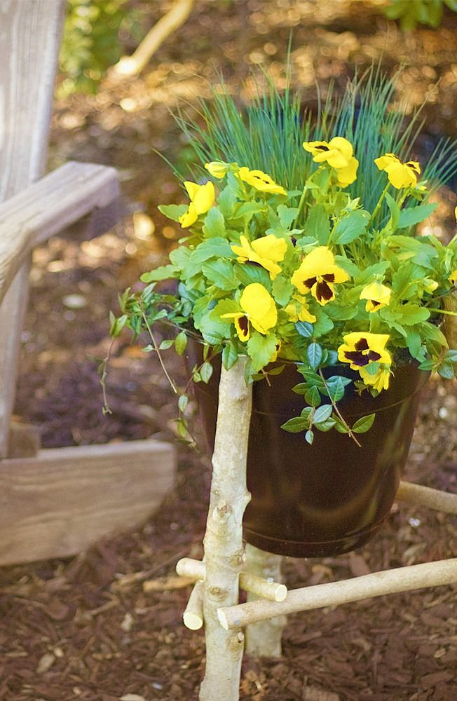 Looking for landscape ideas? Add a rustic planter to your garden this year. This creative and unique holder is great décor for an apartment or patio as well.