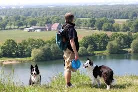 Your dog friendly holidays will really be more memorable if you spend it together with your family and loved ones including your pets. We provide the best offer for you in Burnley. For more information visit : www.ruralcottage.... or you can also call us at 01200 445598 / 07967 312 919. And for more information pet friendly cottages burnley to go for my website http://www.ruralcottage.co.uk/