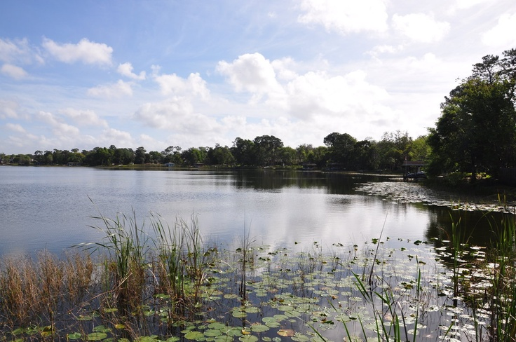 1000 images about central florida ski lakes on pinterest for Fishing near orlando fl