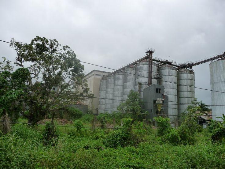 Vergane glorie, Wageningen Suriname