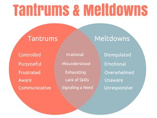 Elementary Counseling Blog: How to Help a Child Having a Meltdown at School