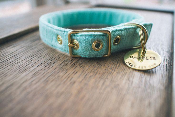 Seafoam Green   Brass Collar