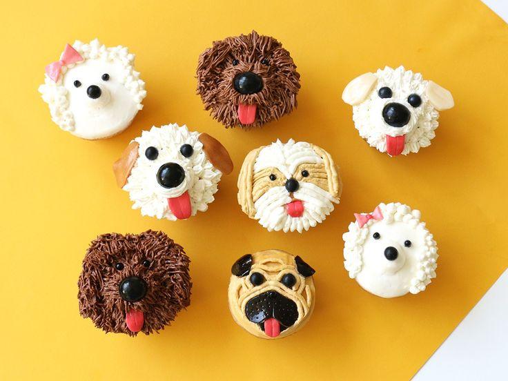 DIY Dog Cupcakes