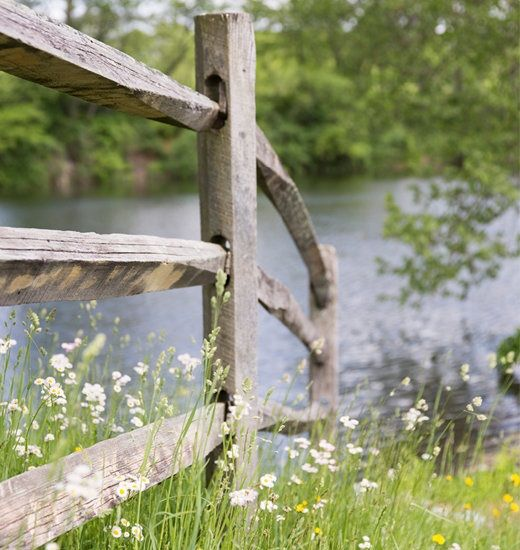 fence by the pond